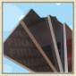 河北建筑模板厂家黑膜板价格13502087050