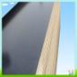 廊坊左各庄建筑模板木材厂家13502087050